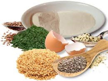 Ingredients final - Common Active Ingredients of Dog Supplements and their Functions