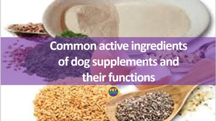 Common active ingredients