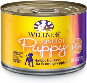 6 300x285 - Best Puppy Food 2021 - Review of 12 Best Large Breed Puppy Foods