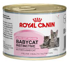 Royal Canin Canned Cat Food Final - Best Kitten Food 2019 — Review of Top Rated Kitten and Cat Foods