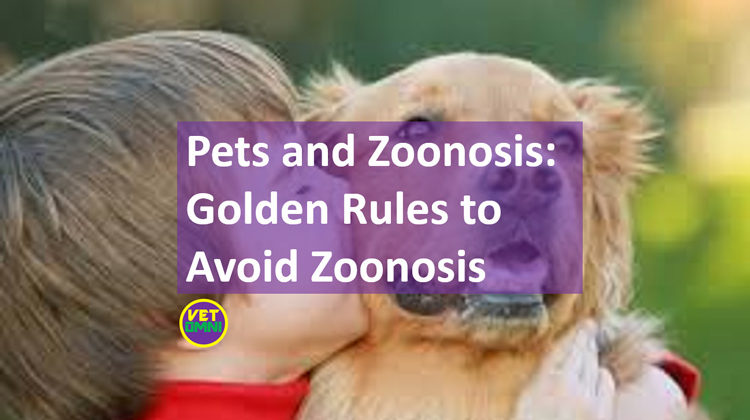 Pets and zoonosis