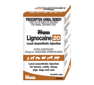 Image 1 300x272 - The Beneficial Use of Lignocaine in Animals During Rectal Palpation