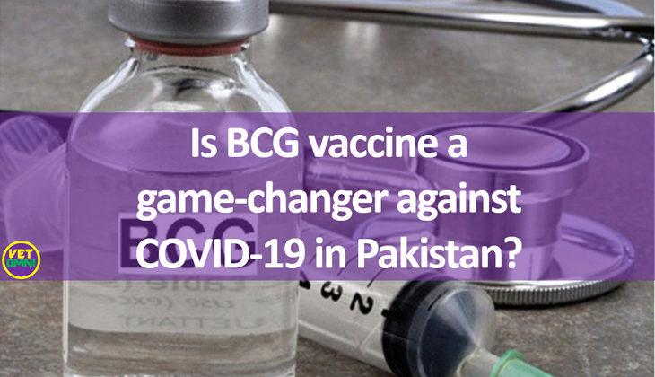 BCG vaccination