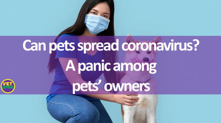 pets spread coronavirus