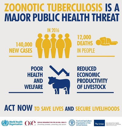 infographic zoonotic tb - Bovine and zoonotic tuberculosis – a major health concern for animals and humans