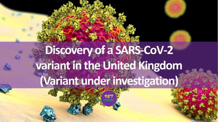 SARS-CoV-2 variant