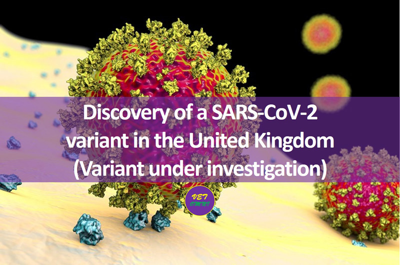 Feature Image edited adj - Discovery of a SARS-CoV-2 variant in the United Kingdom